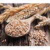 شامپو او جی ایکس OGX اصل بیوتین و کلاژن | ضد ریزش و ضخیم کننده تارهای مو